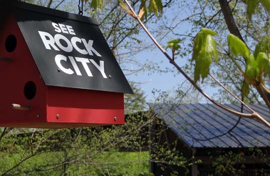 Dogwood City Water Enterprise Fund