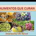 Alimentos que Curan - Seminarios