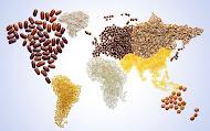 Bahuvida Agro Commodities