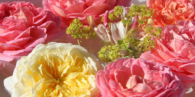 Dekoration med roser