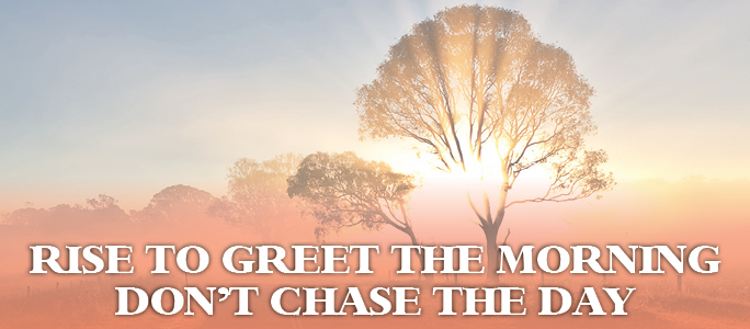 Rise to greet the morning dont chase the day bright designs rise to greet the morning dont chase the day m4hsunfo