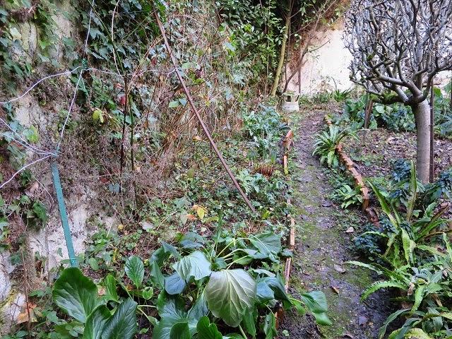 Le vieux Clos : Mon projet jardin : La plate-bande Cour des ...
