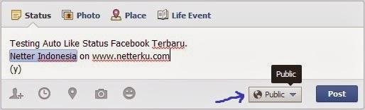 Testing Status - Netterku.com