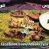 كيفية تحضير فيليه صدور الدجاج المشوى بالصور والخطوات من طبخات الشيف منى عبد المنعم