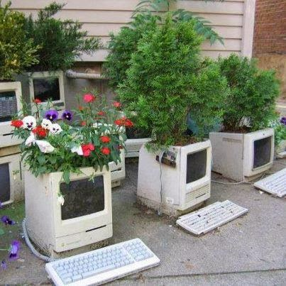 Used Computer Monitor Planter