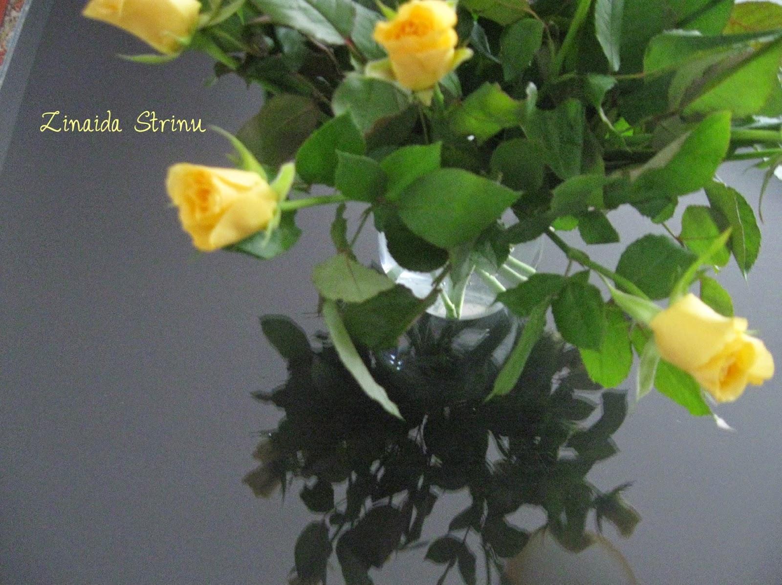 trandafiri-oricand