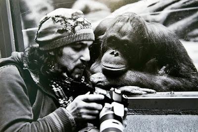 مصورون يخاطرون بحياتهم ويضعون أنفسهم في مواقف صعبة لالتقاط الصورة المثالية dedicated-photograph