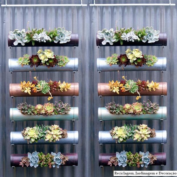 jardim vertical bambu:Meus Momentos Minha Vida: Por que coleção de suculentas e cactinhos?