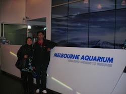 Melbourne Aquarium 2011