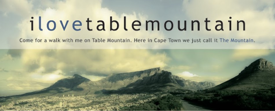 I Love Table Mountain Blog