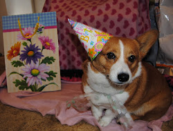 Happy Birthday corgi