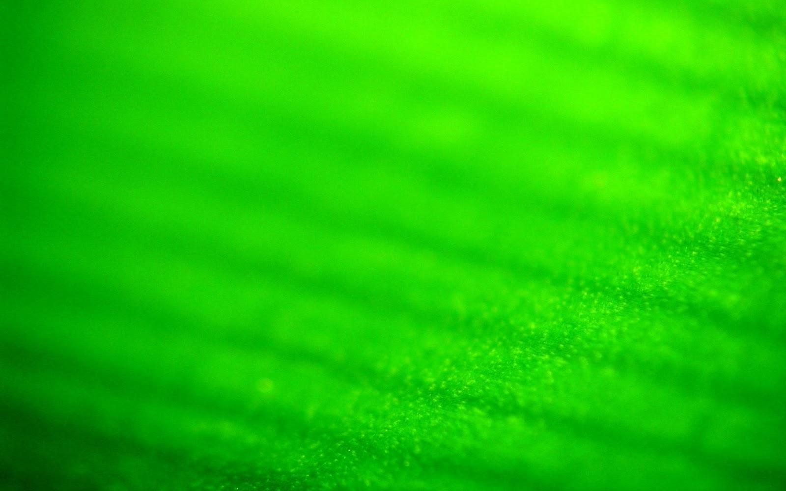 Fondo verde hd imagui for Pagina de wallpapers hd