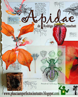 Mundo Apidae