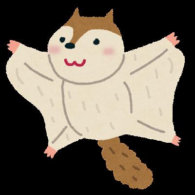 モモンガの画像 p1_25