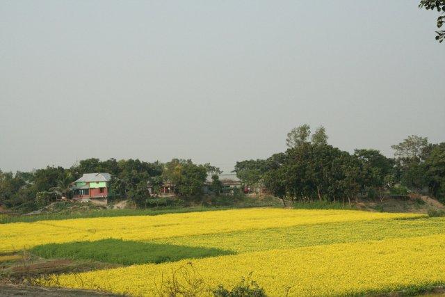Outstanding Beautiful House Bangladesh 640 x 427 · 44 kB · jpeg