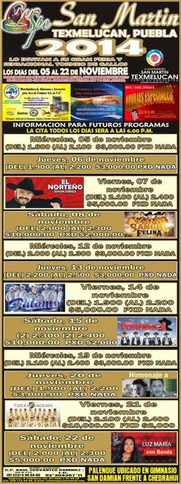 Palenque Feria San martín Texmelucan 2014