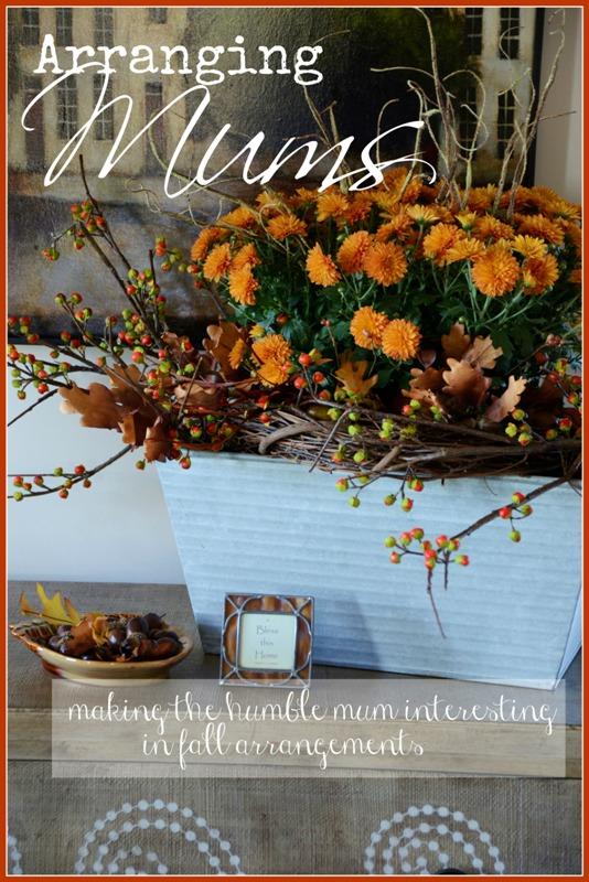 making an interesting mum arrangement for fall stonegable. Black Bedroom Furniture Sets. Home Design Ideas