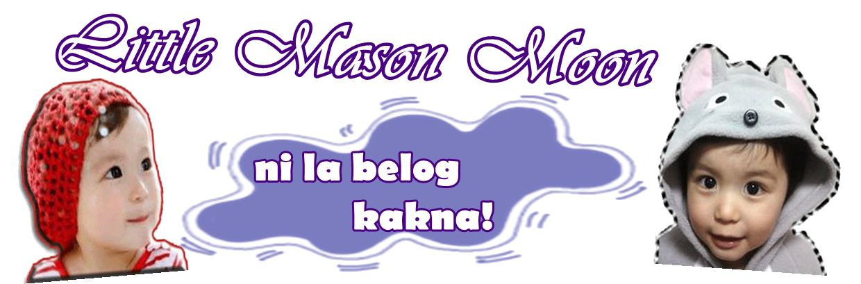 littlemasonmoon.blogspot.com