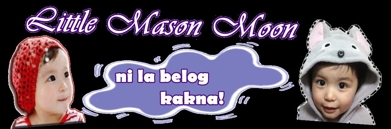 littlemasonmoon.blogspot.com