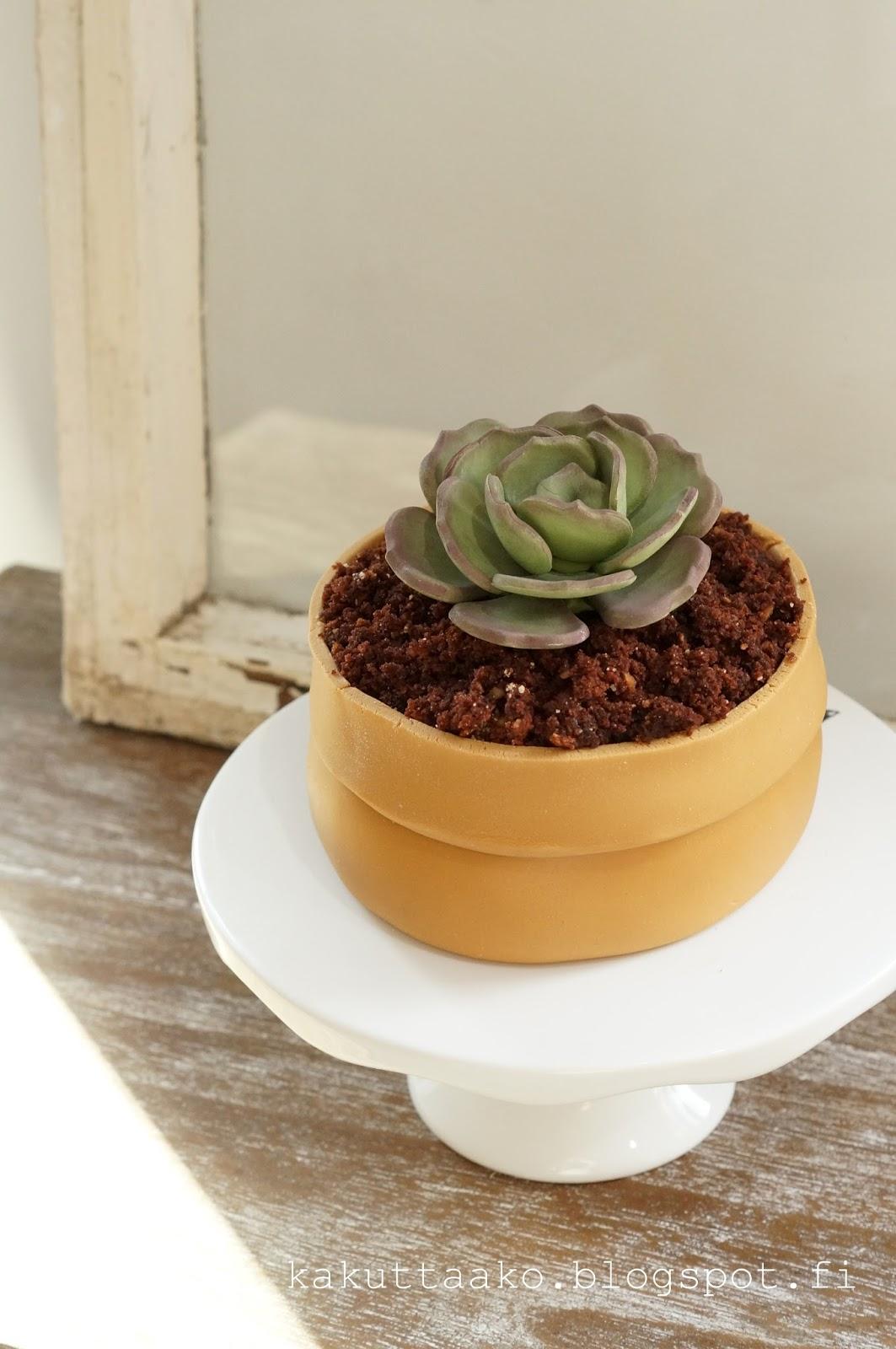 Mehikasvi ruukussa-kakku