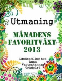 Utmaningen som du inte vill missa!