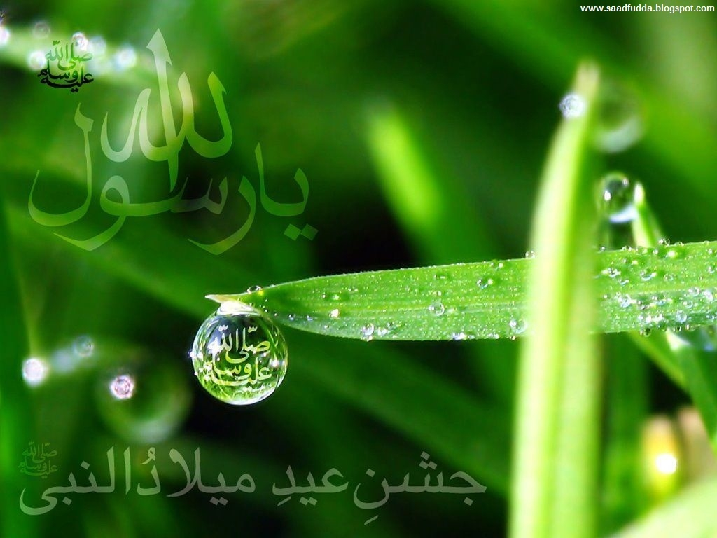 Wallpaper download eid milad un nabi - Milaad Nabi 2012 Eid Milad Un Nabi 2012 Wallpapers And Pics
