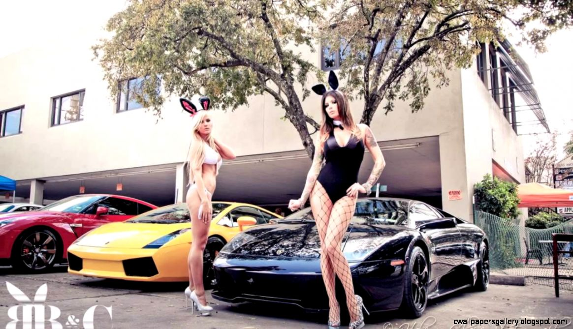 Bunnies Beers  Cars  Car Shipping  Car Transport  Exotic Car