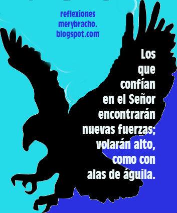 Renueva tus fuerzas, vuela como el águila confiando en Dios. Reflexión corta para ti, renovarse como el águila. Diferencia entre el cuervo y el águila, postales, imágenes de reflexiones cristianas para amigos.