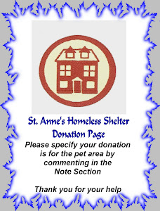 St. Annes Homeless Shelter            Pet Area