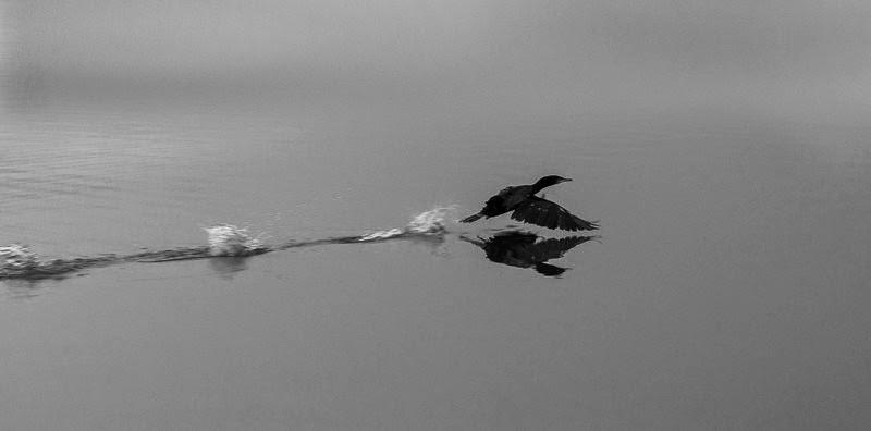 lac d enghien