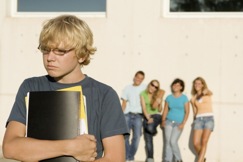 Essay about Cyberbullying: Prevention and Avoidance