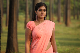 Meghana Raj in Saree from movie Jakkamma Movie