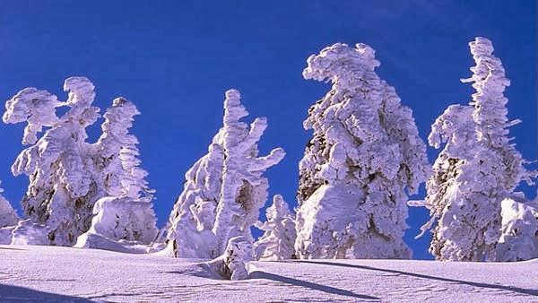 proses terjadinya salju, salju jerman