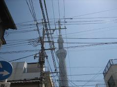 Nihon Tour