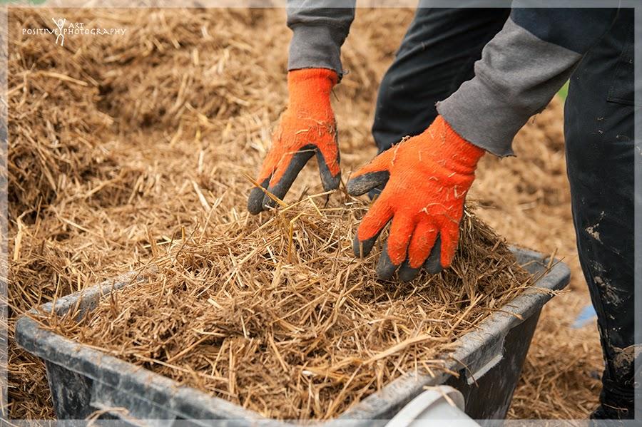 za-i-przeciw-ekologiczny-dom-budownictwo-naturalne