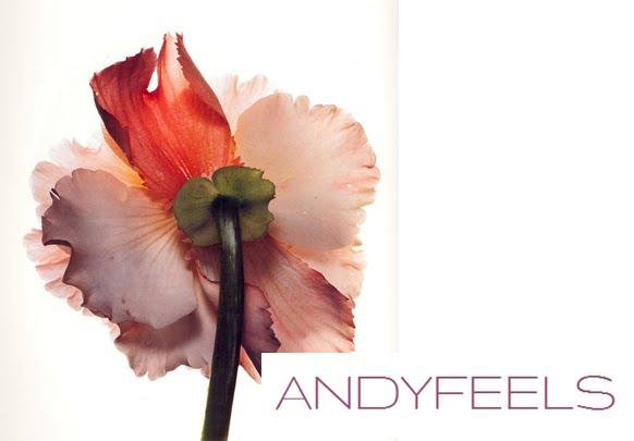 ANDYFEELS