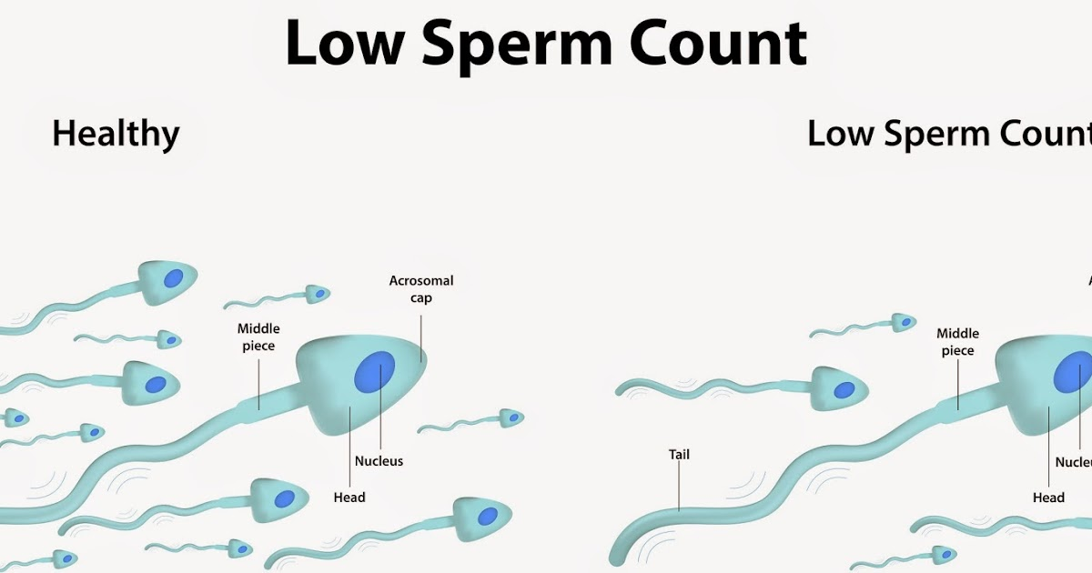 Levitra increases sperm count