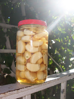 Pickled Garlic (Torshi Toum)