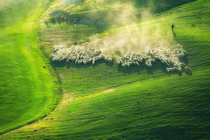 Живописные поля Италии (7 фото)