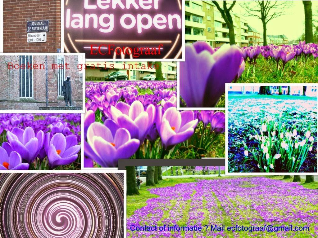 """<img src""""EC Fotograaf-Lente-foto-collage-Groningen"""""""