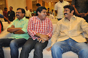 Lion movie success meet photos gallery-thumbnail-13
