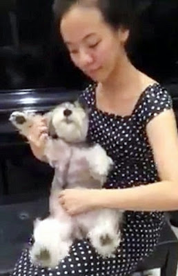Hot asian woman plays tickles dog
