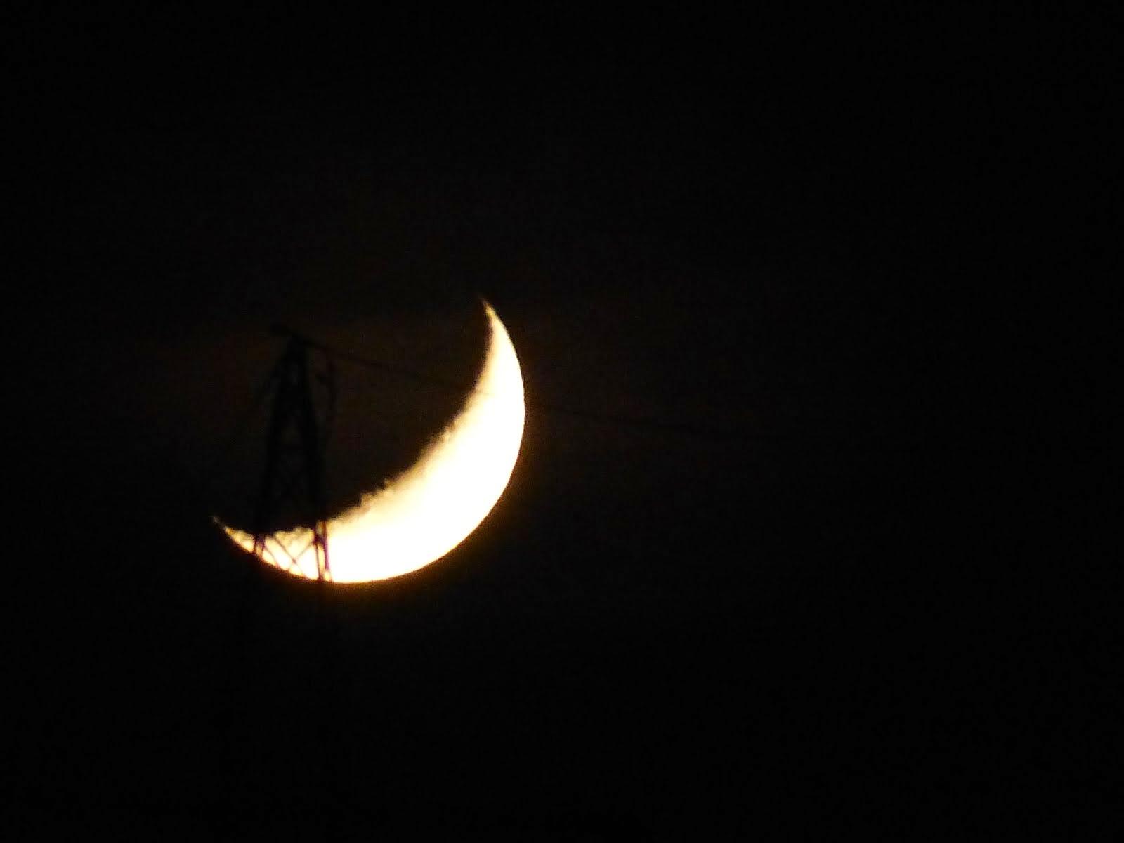 NachtNatur