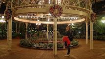 Viva Nashvegas Nashville' Opryland Gardens