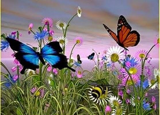 Imagens De Jardins Com Flores E Borboletas - Banco de Imagem artrópode, jardim flor, animal, borboleta