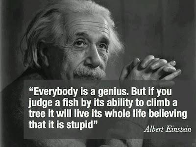 Einstein - Todo el mundo es un genio