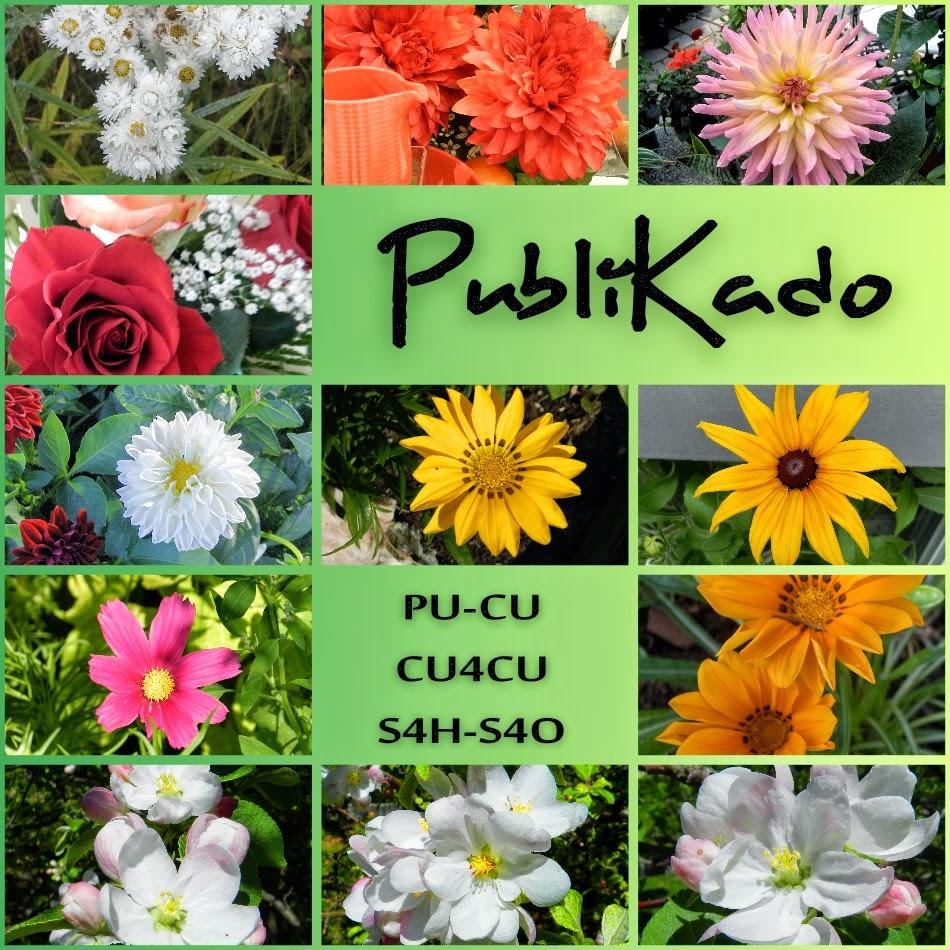 http://3.bp.blogspot.com/-bpsG3rSNCWo/U8_Sbf7nhDI/AAAAAAAAMzY/yiJpBARx49k/s1600/Photos+de+fleurs+-+Pack+%23+1++PREVIEW.jpg