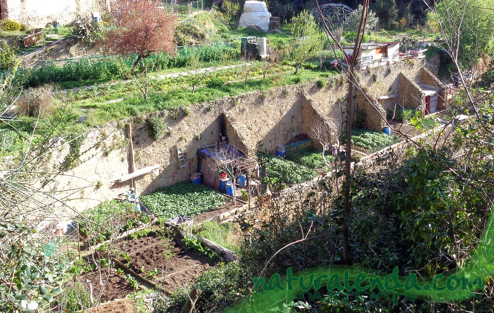 huertos en terrazas