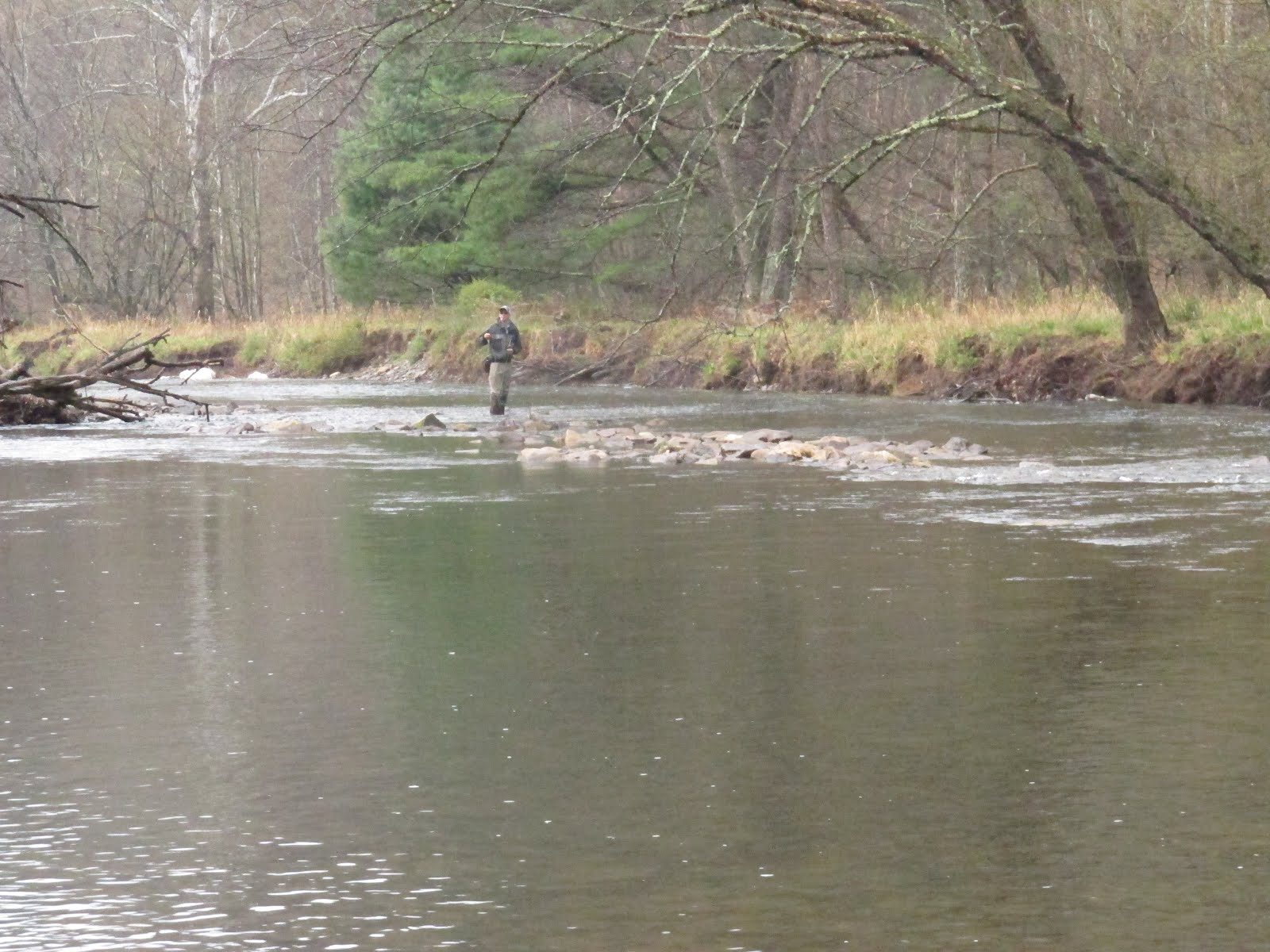 Chagrin river outfitters ohio steelhead smallmouth and for Fishing in pennsylvania