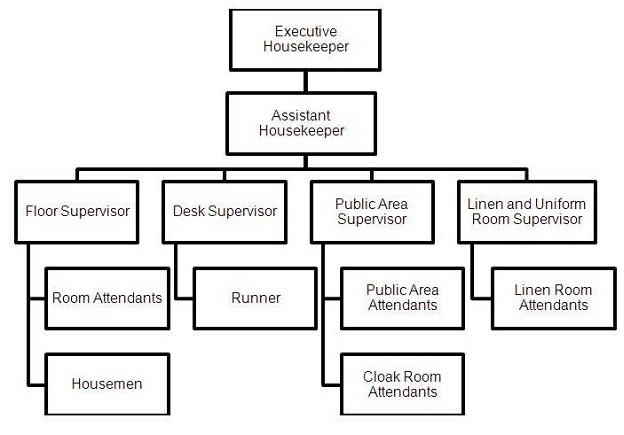 organizational chart of housekeeping department and their duties Free essay: organizational chart of housekeeping department (large establishment) executive housekeeper/housekeeping manager roomskeeping supervisor public.